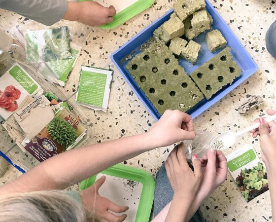 A Healthy Start at St. George School
