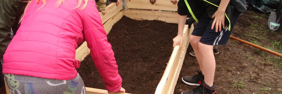 Planting the Seeds of Healthy Eating at Regina Street Alternative School